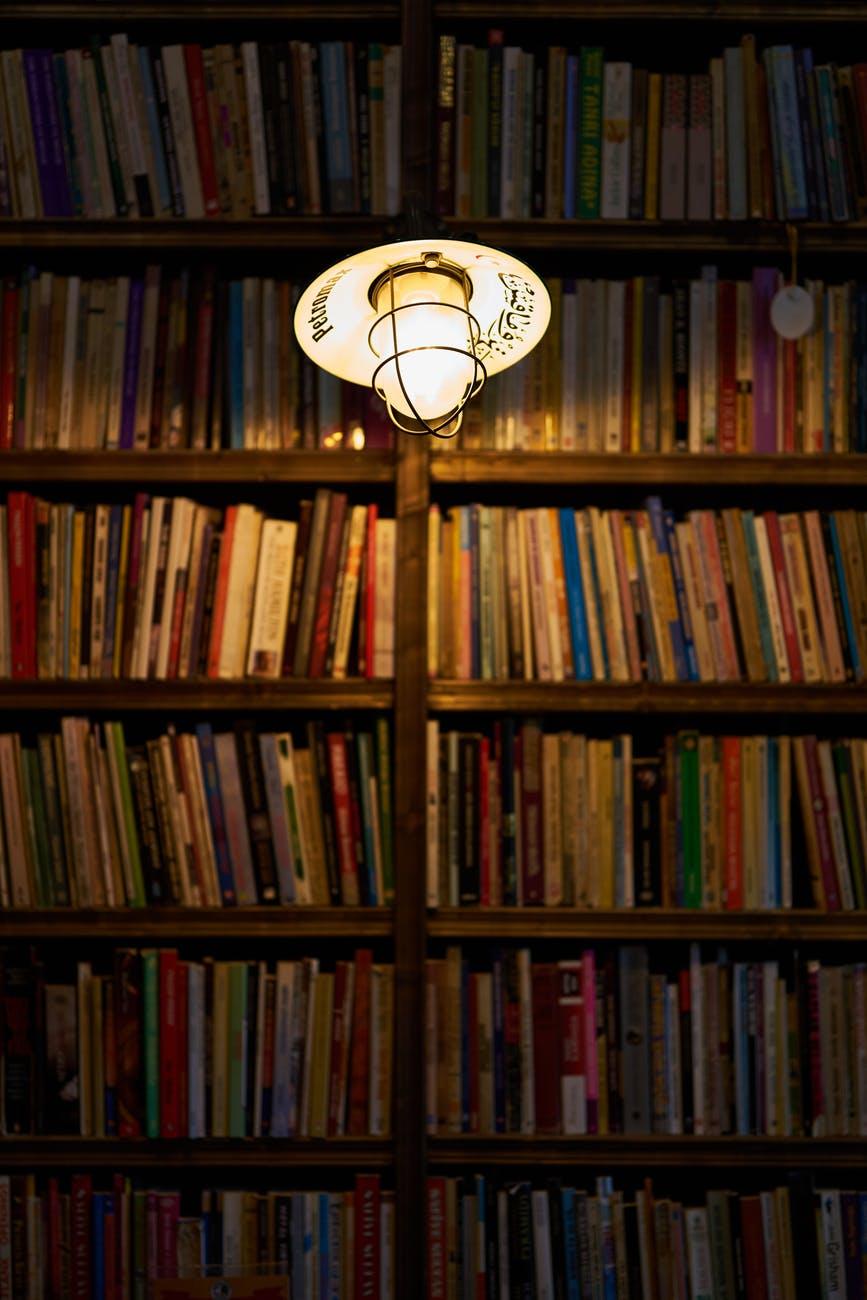 light bulb beside books on shelf