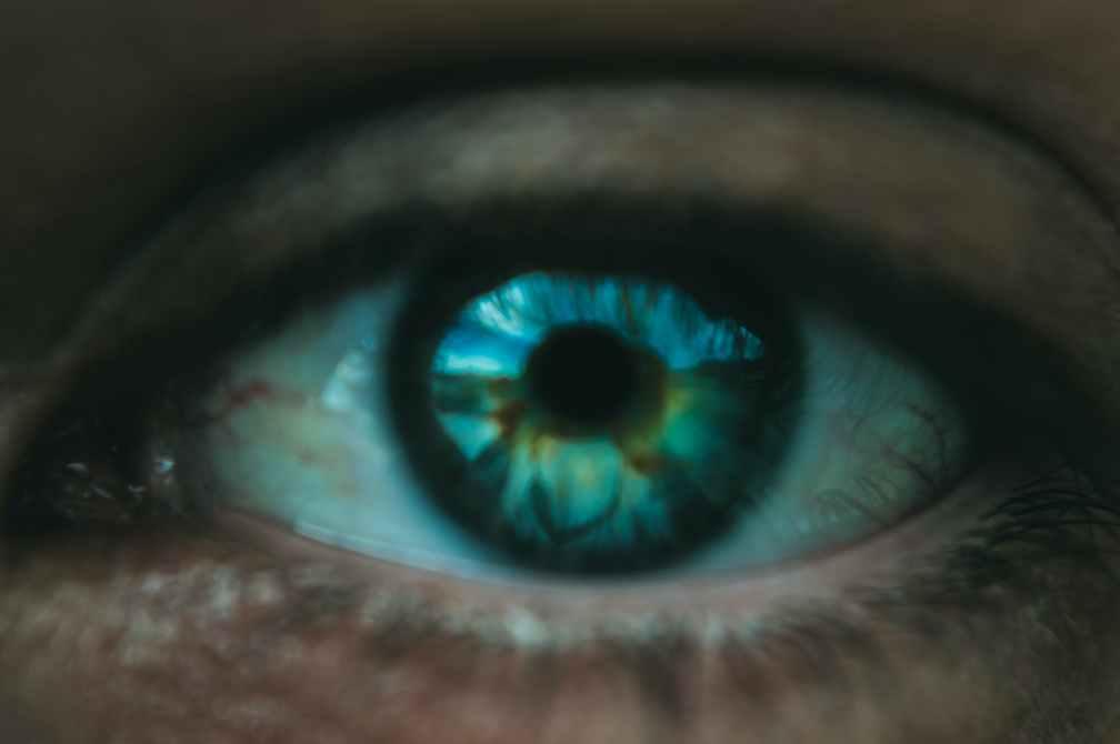 blue human eye of crop person